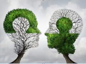 Thinking Partner