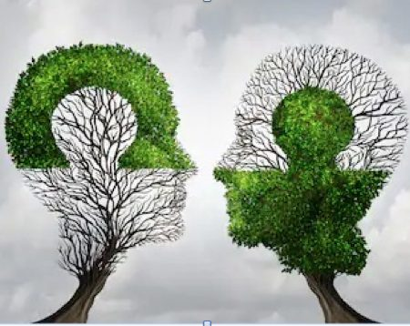Convertirse y Ser un Thinking Partner. Fase I